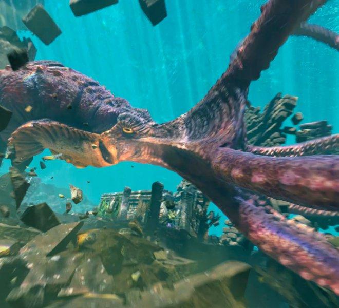 Kraken-05